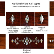 0-Rail-sights2